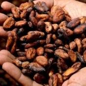 naturvit - kakao